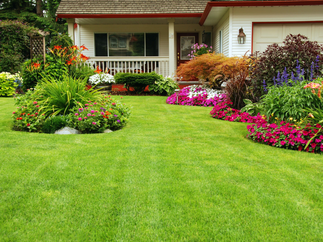 Revamp the Look of Your Landscape in the Matthews, NC Area